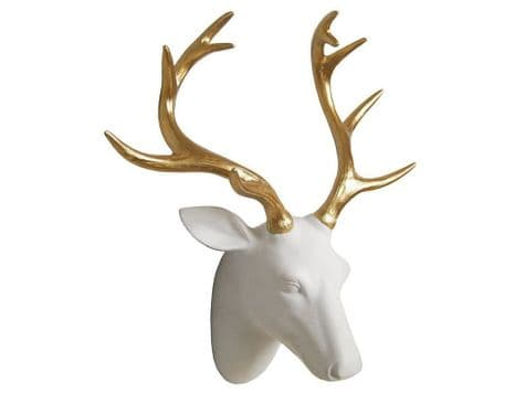 white stag head hanging | gold antlers stags head